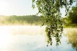 Early misty gentle morning on the river. soft light and tree branches above the water with rays