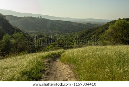Early Morning Along a Hiking Trail in O'Neill Regional Park, CA Zdjęcia stock ©
