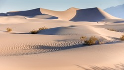 Early Morning at the Mesquite Flat Sand Dunes. Death Valley National Park, California, USA.