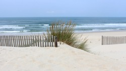 Early morning at Vagueira Beach with sea oats and dune fence in Aveiro, Portugal