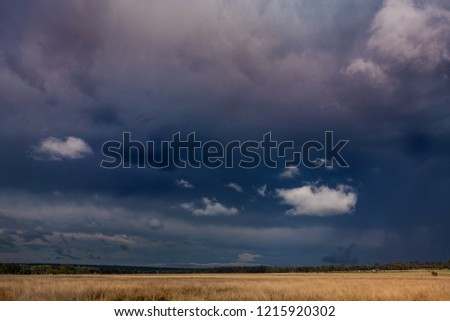 early morning dark stormy skies over golden grass paddock in australian countryside