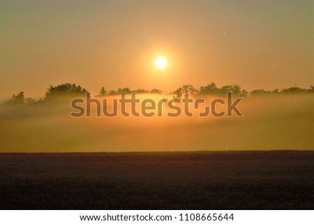 Early morning fog #1108665644