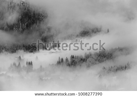 Early morning fog by a lake with snowy pine trees #1008277390