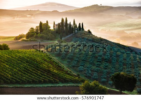 Stock Photo Early morning in San Quirico d´Orcia, Tuscany