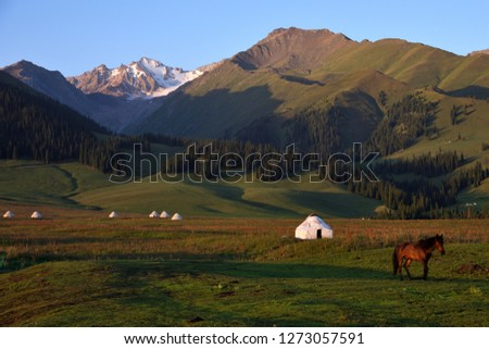 Early morning in the Nalati grassland in Xinjiang, China. The sun is slanting in the mountains and grasslands, and the herdsmen's tents are arranged from near to far, and a horse walks in the pasture. #1273057591
