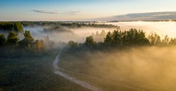 Early morning landscape. Foggy forest. Footpath trough the forest in a thick mysterious fog at sunrise. View from above