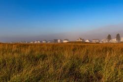 Early morning marsh grass of Wells Beach, Maine.