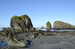 Early morning minus tide reveals tide pools at the Oregon Coast
