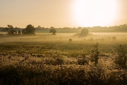 Early morning mist and fog being burnt off the landscape by the rising sun in Queensland, Australia.