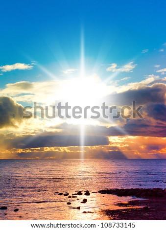 Early Morning Morning Glory