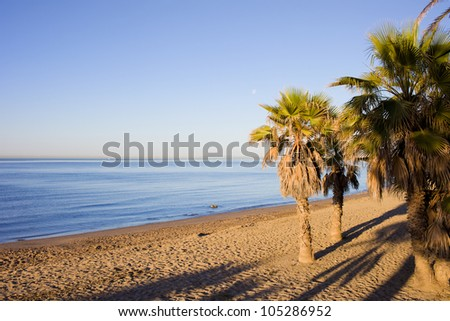 Early morning on a sandy beach by the Mediterranean Sea in Marbella, Costa del Sol, Andalucia, Spain.