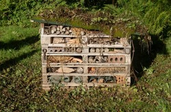 Early Morning Sunlight on a Home Made Bug House, Insect Hotel or Invertebrate Nesting Box in a Woodland Garden in Rural Devon, England, UK