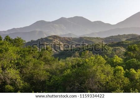 Early Morning View in O'Neill Regional Park, CA Zdjęcia stock ©