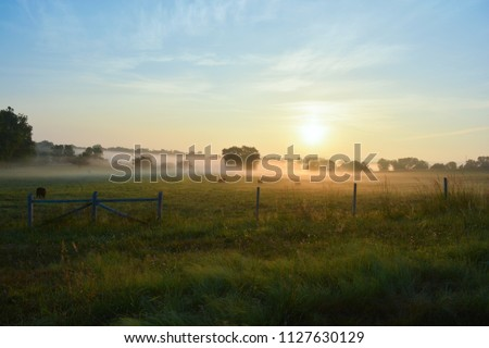 Early morning view of a Virginia farm at sunrise.  Beautiful soft glow of the sun, illuminating a soft low lying fog  as cows graze in the field. #1127630129