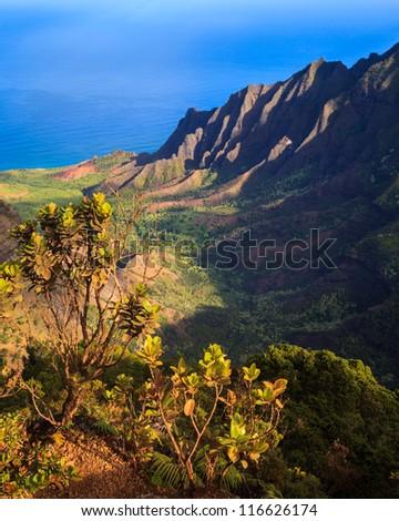 Early morning view of the Kalalau Valley at the Na Pali Coast, Kauai.