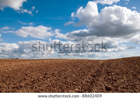 early spring field blue sky and white clouds landscape