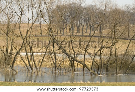 early spring, flooded fields, thaw