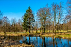 Early spring landscape of mixed European forest and water ponds in Konstancin-Jeziorna Springs Park - Park Zdrojowy w Konstancinie-Jeziornie - near Warsaw in Poland