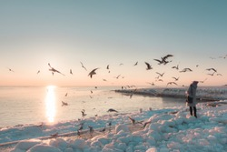 Early winter morning at the beach with ice and snow. Sunny pink light , sea birds ower the buildings. Odessa, February