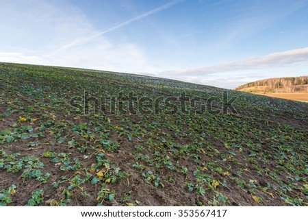 Early winter or late autumnal landscape of field at good weather. Fields with little snow. #353567417