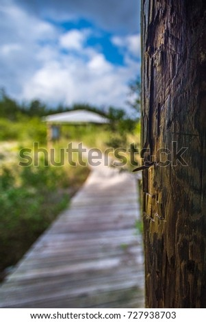 Earman Island, Indian River Lagoon, Vero Beach, Florida #727938703