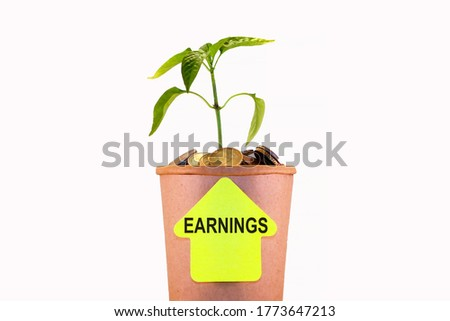 Earnings. Growth, concept for business, finance and investment. The plant grows in a container with coins. Isolated.