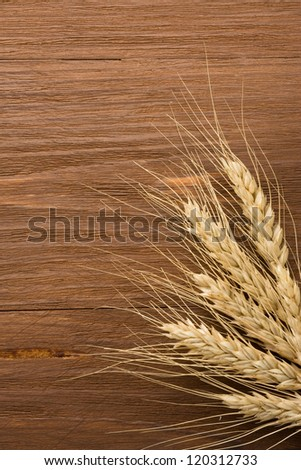 ears of barley on wooden background