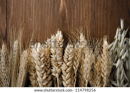 ears of cereals on wooden background