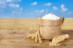 Ears of wheat and flour in bag on table with field on background. Photo with copy space area for a text