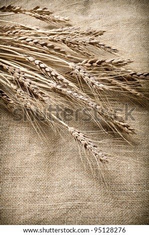 Ears of wheat on linen fabric