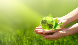 Earth crystal glass globe ball and maple leaf in human hand on grass background. Saving environment, save clean green planet, ecology concept. Card for World Earth Day.