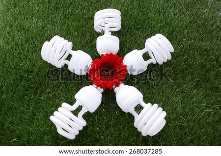Earth Day, April 22, concept with energy saving light bulbs on grass.