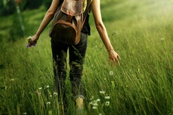 earth day. woman traveler walking among grass in meadow and holding in hand gathering wildflowers in mountains in sunlight, back view,  space for text