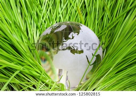 Earth in green grass
