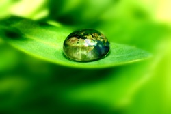earth map in waterdrop reflection on green leaf