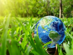 Earth on green grass on sunlight, Love and Save the World for the Next Generation concept, Earth day concept, Elements of this image furnished by NASA