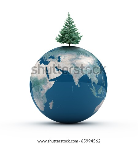 Earth on the floor with fir tree isolated on white