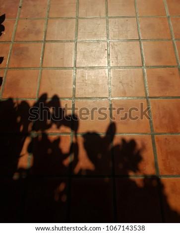 earthenware tile floor #1067143538