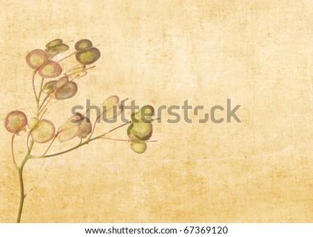 earthy background image with floral elements.