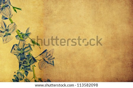 earthy floral background and design element