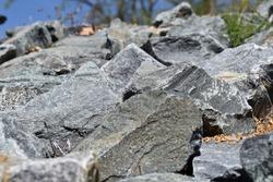 Earthy Fresh Very Natural Rocks