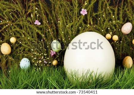 Easter background - blank ostrich-egg in green grass