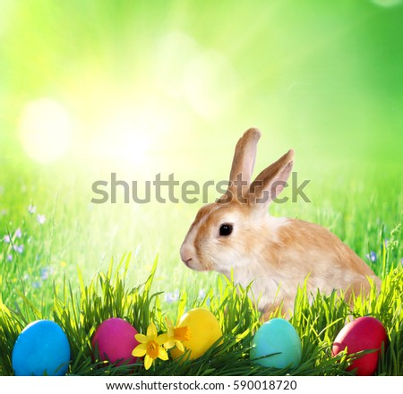Easter background. Cute Little bunny and Easter eggs on green grass  #590018720