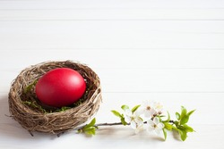 Easter background, nest with red egg and blossoming branch on white wooden background, space for text
