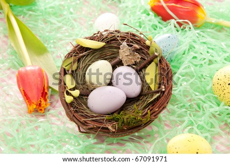 Easter blue, pink, yellow Painted Colorful sunday eggs in birds nest decorated with spring tulips on a pastel background