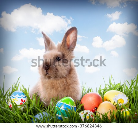 Easter bunny and Easter eggs on green grass  #376824346