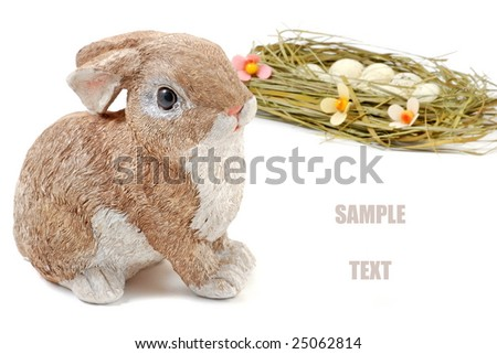 Easter bunny and nest with eggs. Place fro your text. #25062814