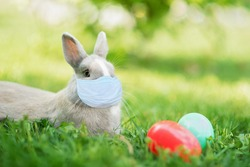 Easter bunny in medicine mask and eggs on spring green grass. Cute rabbit. Easter egg hunt with pet bunny. Happy Easter on quarantine coronavirus pandemic. safety social distance.