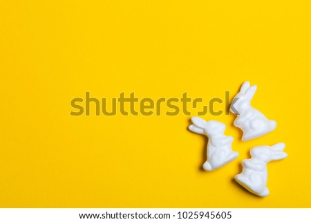 Easter bunny rabbits on a bright yellow background #1025945605