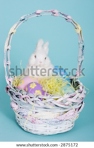 easter bunny with a wooden basket and easter eggs